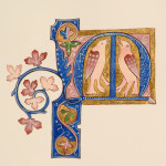 Luttrell Psalter Illuminated M by Toni Watts