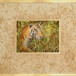 Tiger - 'Then and Now' - mixed media painting with gold leaf by Toni Watts, wildlife artist